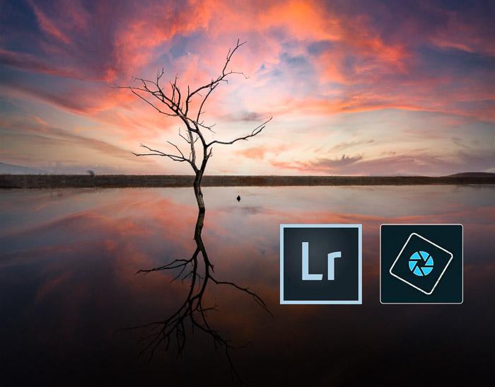 Ícones do pôr do sol do Lightroom Photoshop Elements Tree
