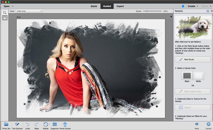 Captura de tela de elementos do photoshop com efeito de pintura.